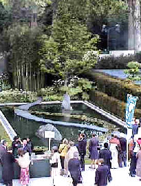 webcam2 chelsea flower show