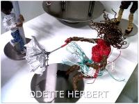 HOHGWB1_IMG10396-20120229-2231-hohR